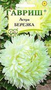 Астра Берёзка, воронежская Image