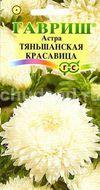 Астра Тяньшанская красавица, пионовидная белая Image