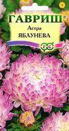 Астра Яблунева, пионовидная Image