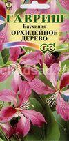 Баухиния Орхидейное дерево Image